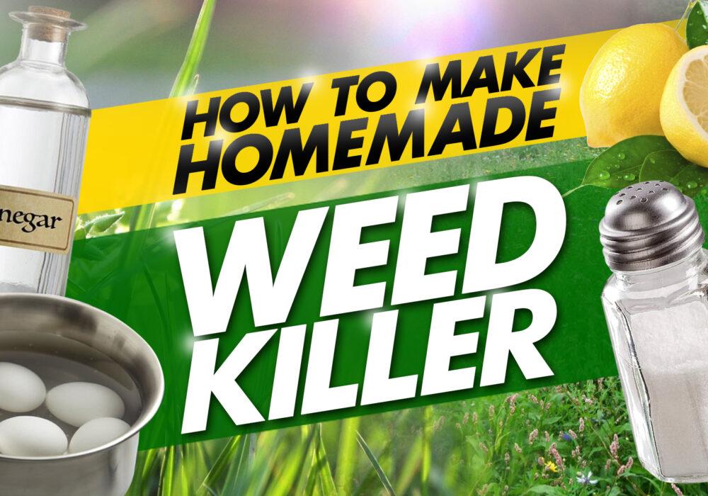 how to make homemade weed killer