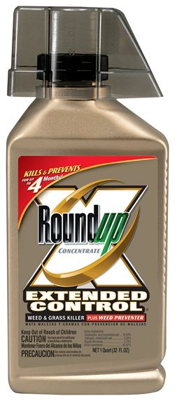 roundup-5705010-extended-control-weed-and-grass