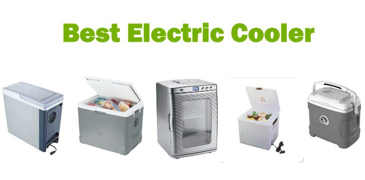 Top 10 Best Electric Coolers