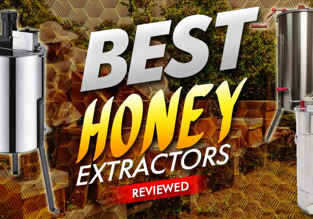 Best Honey Extractors Reviewed