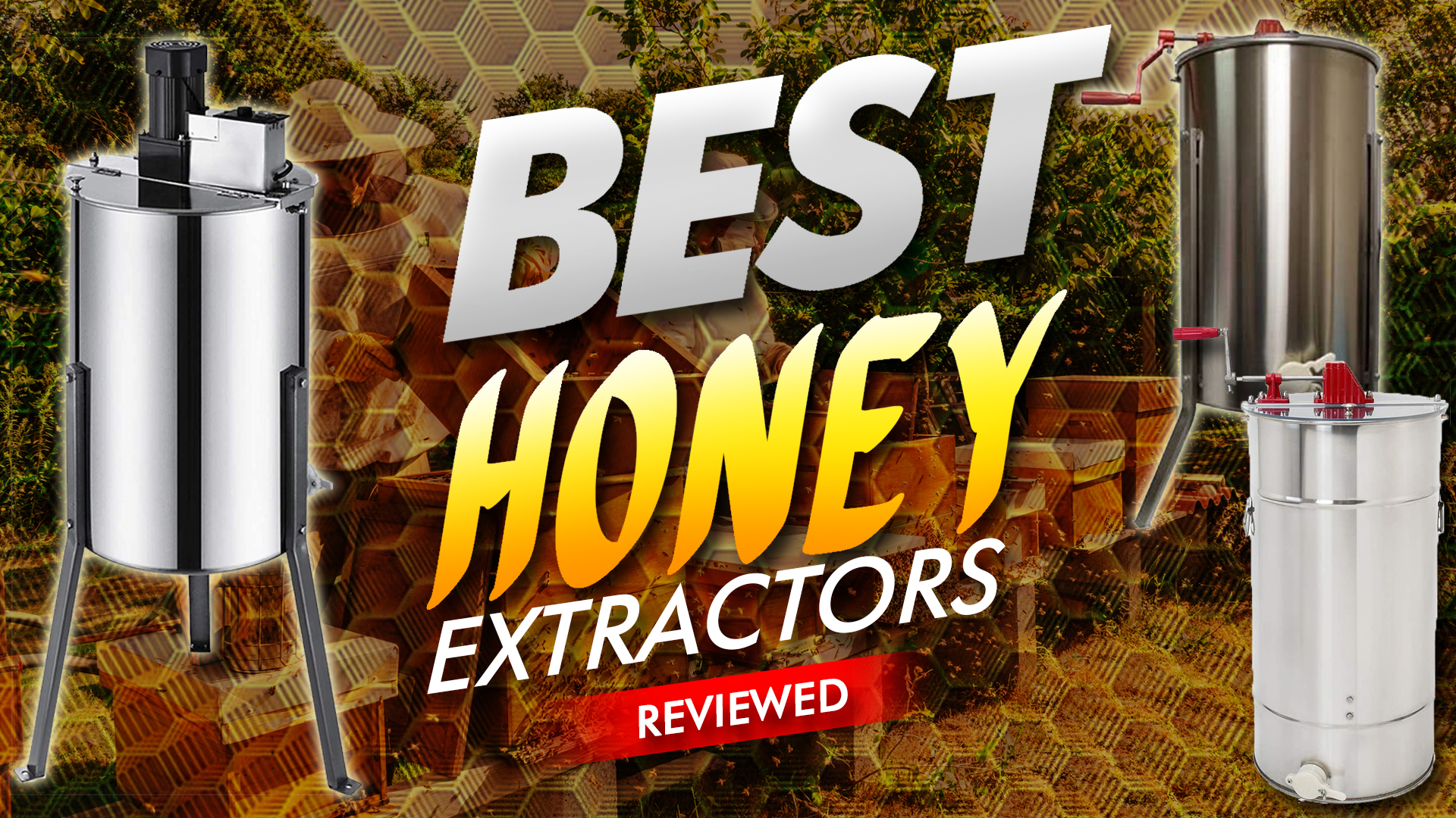 Best Honey Extractors Reviewed